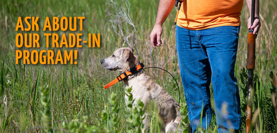 Used Hunting Dog Supplies Trade-In Program